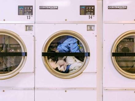 Laundromat-Local Pig-40